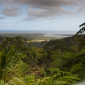 Alexandra lookout (Queensland - Australie)