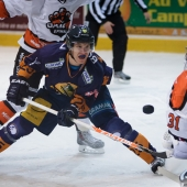 Hockey - Ligue Magnus - Chamonix