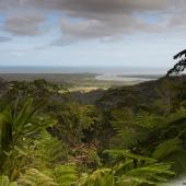 Alexandra lookout (Queensland - Australie)