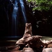 Ellinja falls (Queensland - Australie)
