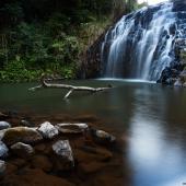 Pepina falls (Queensland - Australie)